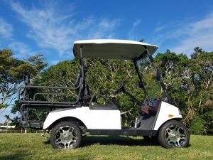 t sport golf car side view