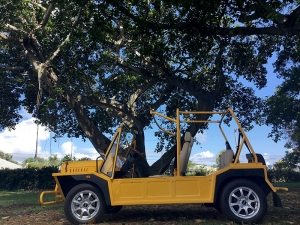 Yellow Golf Car From Moke