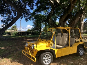 yellow moke golf car