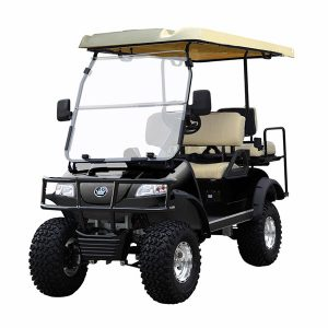 golf cart palm beach, golf cart rental, golf cart repair