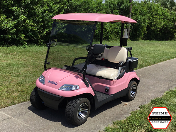 advanced ev 2 passenger golf cart, advanced ev golf cart palm beach