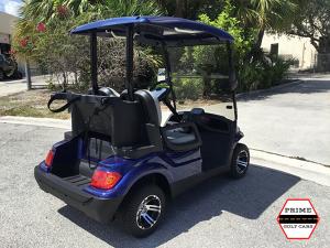 advanced ev 2 passenger golf cart, advanced ev golf cart palm beach