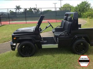 e wagon golf car, e wagon golf cart, e wagon, golf car, golf cart