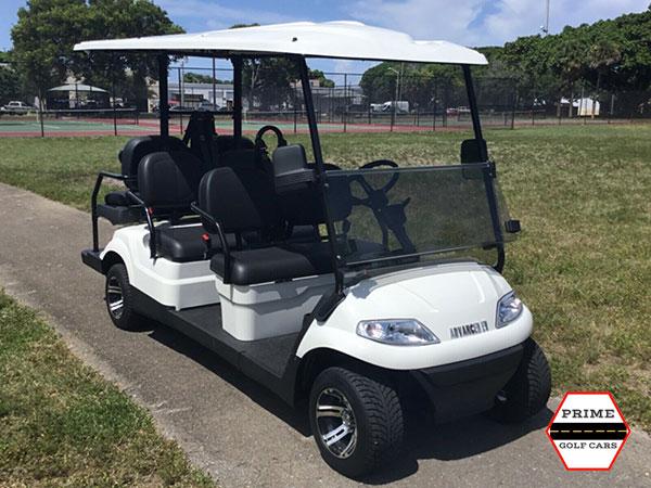 advanced ev 4+2 golf cart, ev 4+2 cart, ev 4+2 cart palm beach